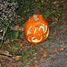 Spectacular gourds: Kentville's fifth annual Pumpkin Walk draws crowds despite wet weather
